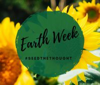 Earth week for mother earth - Fighting climate change